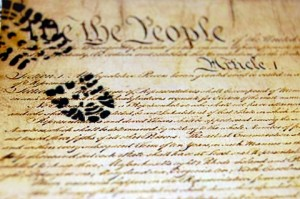 trampled constitution